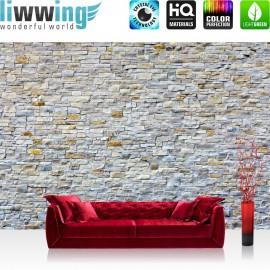 PREMIUM Fototapete - no. 168 | Steinwand Steinoptik Steine Wand Mauer Steintapete grau