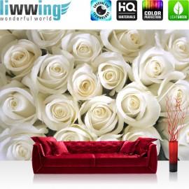 PREMIUM Fototapete - no. 184 | Blumen Rose Blüten Natur Liebe Love Blüte Weiß