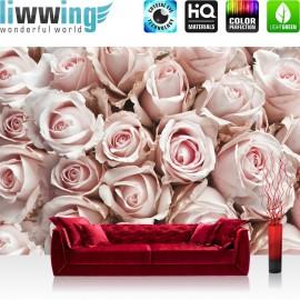 PREMIUM Fototapete - no. 189 | Blumen Rose Blüten Natur Liebe Love Blüte Weiß