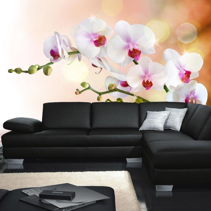 vlies-fototapete-no-200-berge-tapete-orchidee-blumen-blumenranke-weiss-pink-natur-pflanzen-abstrakt-grau.jpg