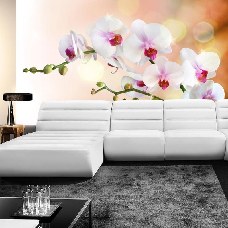 vlies fototapete no 200 berge tapete orchidee blumen blumenranke wei pink natur pflanzen abstrakt grau - Fototapete Grau Wei