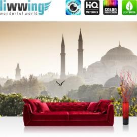 "Vlies Fototapete ""no. 250"" | Türkei Tapete Istanbul Moschee Natur Nebel braun"