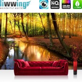 PREMIUM Fototapete - no. 252   Wald Bäume Natur Sonne Wasser