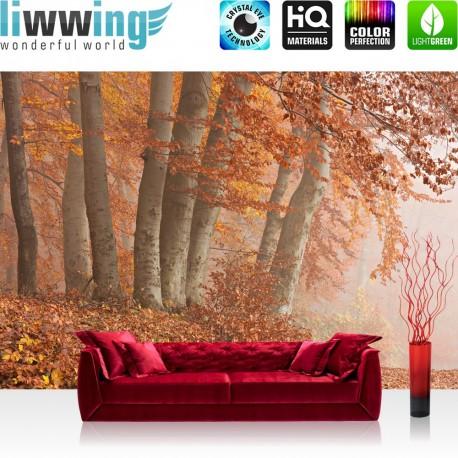 """Vlies Fototapete """"no. 255""""   Wald Tapete Bäume Natur Herbst Nebel braun"""