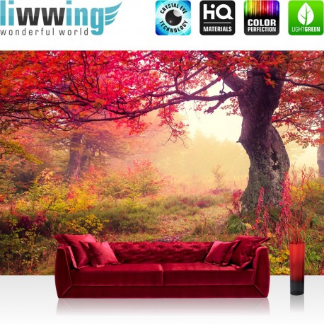 "Vlies Fototapete ""no. 258"" | Wald Tapete Bäume Herbst Natur Sonne beige"