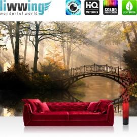 PREMIUM Fototapete - no. 264   Wald Wasser Bäume Herbst Natur Sonne