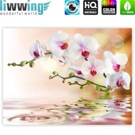 "liwwing (R) Marken Leinwandbild ""no. 200"" | classic (4:3) | Orchidee Blumen Blumenranke Weiß Pink Natur Pflanzen Abstrakt"