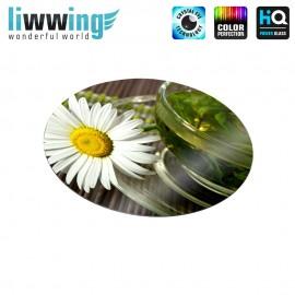 Glas-Topfuntersetzer Set no. 3587 | Kulinarisches Tasse, Kräutertee, Kamille, Cup, Herbal Tea, Chamomile natural | liwwing (R)