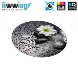 Glas-Topfuntersetzer Set no. 3612 | Natur Steine, Blüte, Tau schwarz - weiß | liwwing (R)