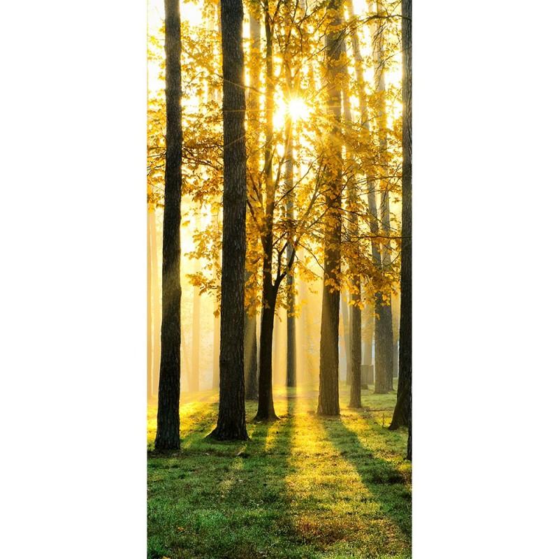liwwing r marken vlies t r fototapete sunlight forest. Black Bedroom Furniture Sets. Home Design Ideas