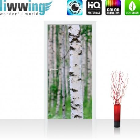 Fototapete birkenstämme  liwwing (R) Marken Vlies Tür Fototapete