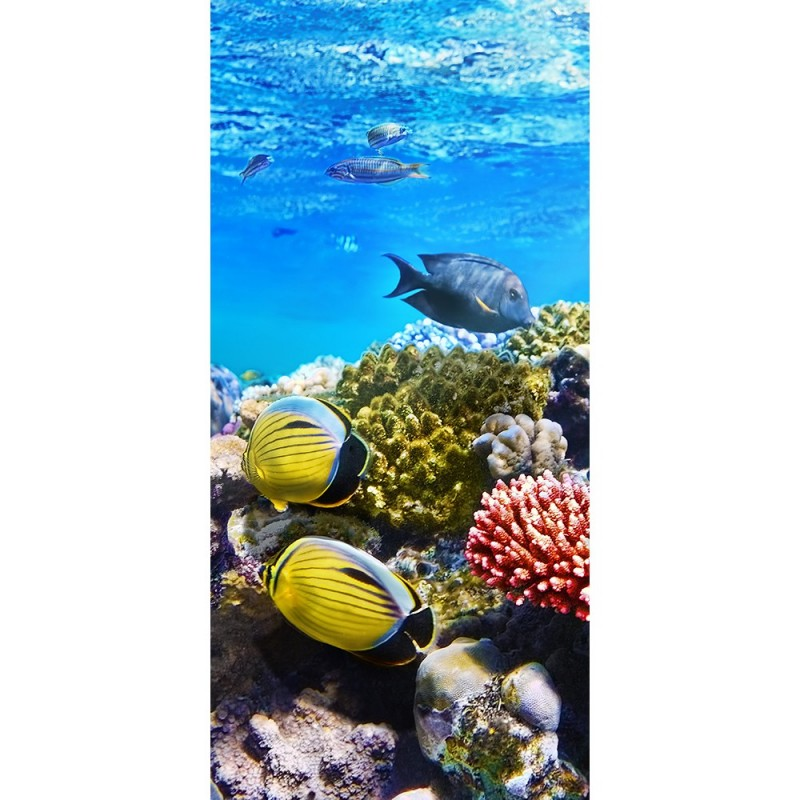 t r fototapete underwater reef 100x211 cm aquarium unterwasser meer fisch ebay. Black Bedroom Furniture Sets. Home Design Ideas