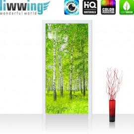 "Tür Fototapete ""Sunny Birch Forest"" | 100x211 cm | Birkenwald Bäume Wald Sonne Birke Gras Natur Baum | liwwing (R)"