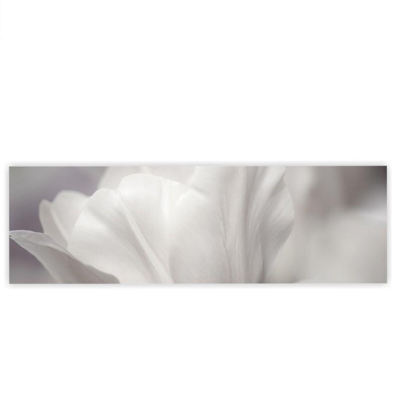 Liwwing r marken leinwandbild white tulips panorama - Leinwandbild grau ...