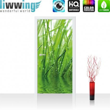 Tür Fototapete ''no. 4297'' | 91x211cm | Natur Gräser, Blatt, Wasser, Gras, Tau, Grashalm, Tropfen | liwwing (R)