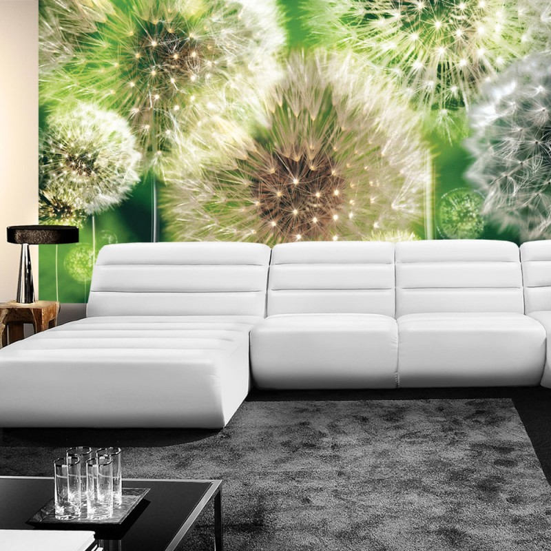 vlies fototapete no 285 pflanzen tapete pusteblumen. Black Bedroom Furniture Sets. Home Design Ideas