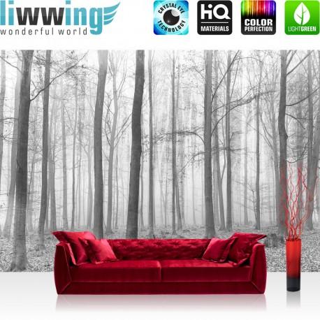 Vlies Fototapete no. 4433 | Natur Tapete Wald Baum Nebel grau | liwwing (R)