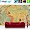 Vlies Fototapete no. 4313 | Städte & Länder Tapete Landkarte Karte Kontinent Vintage Globus Atlas Reise gelb | liwwing (R)