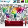 Vlies Fototapete no. 4408 | Städte & Länder Tapete Design Modern Karte Landkarte Welt Geometrie Länder Text bunt | liwwing (R)