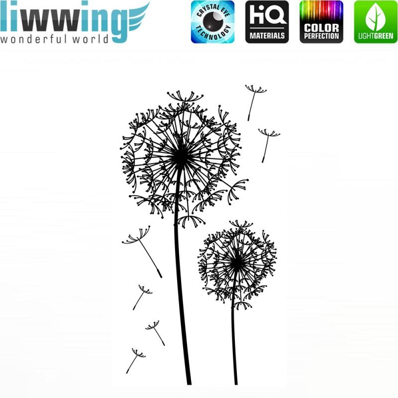 bilder pusteblume pusteblume im sonnenuntergang foto bild pflanzen pusteblume im gegenlicht. Black Bedroom Furniture Sets. Home Design Ideas