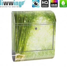 Design XXL Edelstahlbriefkasten mit Wandbefestigung & Zeitungsrolle   Bambusweg Bambuswald Dschungel Asien Way Wald   no. 0002