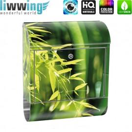 Design XXL Edelstahlbriefkasten mit Wandbefestigung & Zeitungsrolle   Bambus Bambuswald Dschungel Asien Bambusweg   no. 0018