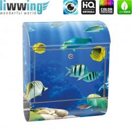 Design XXL Edelstahlbriefkasten mit Wandbefestigung & Zeitungsrolle | Aquarium Unterwasser Meereswelt Meer Fisch Riff | no. 0033