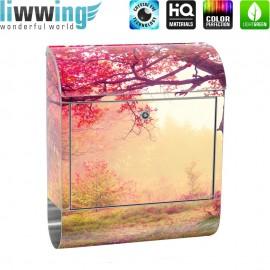 Design XXL Edelstahlbriefkasten mit Wandbefestigung & Zeitungsrolle   Wald Bäume Herbst Natur Sonne   no. 0258