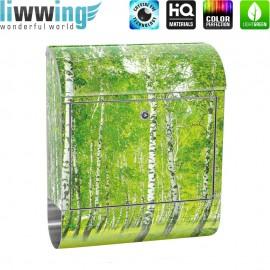 Design XXL Edelstahlbriefkasten mit Wandbefestigung & Zeitungsrolle | Birkenwald Baum Wald Sonne Birke Gras Natur | no. 0112