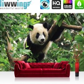 "Vlies Fototapete ""no. 986"" | Tiere Tapete Tier Panda Bär Baum Fell Kinderzimmer Zoo Dschungel grün"