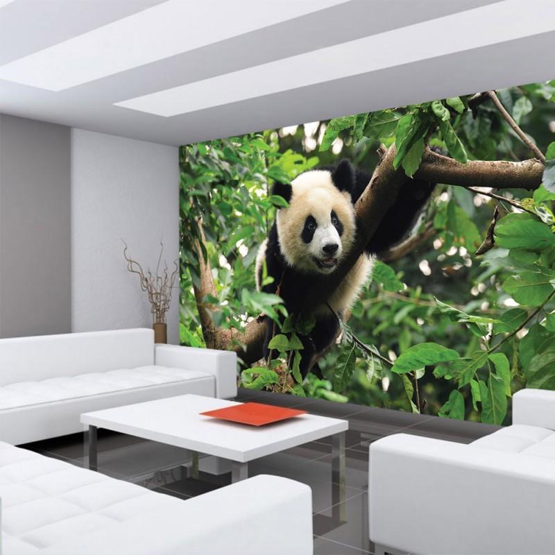 Vlies fototapete no 986 tiere tapete tier panda bar baum fell kinderzimmer zoo dschungel grun.jpg