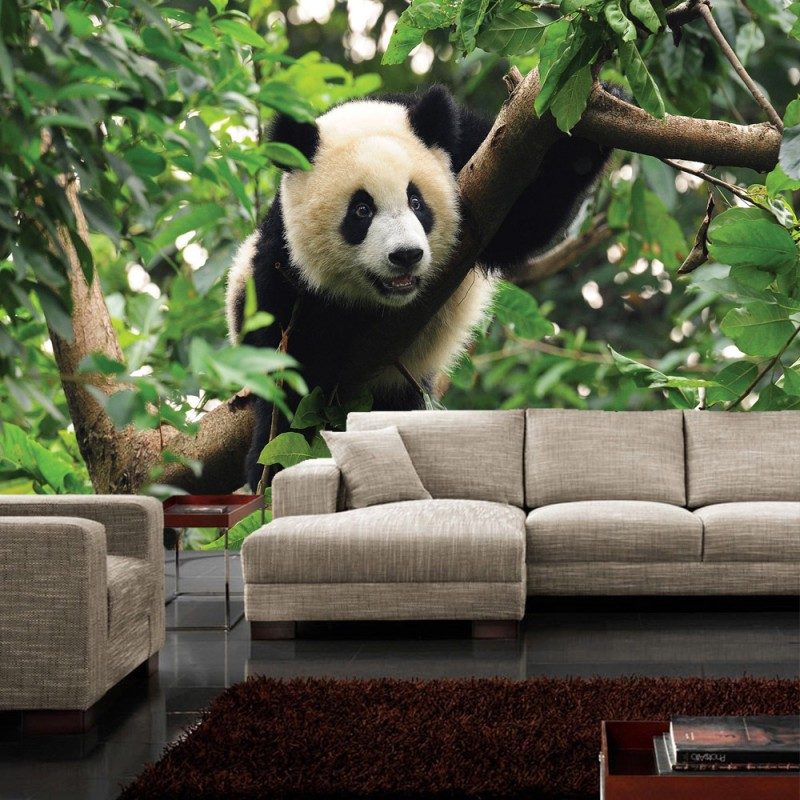 vlies fototapete no 986 tiere tapete tier panda b r baum fell kinderzimmer zoo dschungel gr n. Black Bedroom Furniture Sets. Home Design Ideas