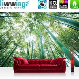 """Vlies Fototapete """"no. 410""""   Wald Tapete Wald Bäume Himmel Bambus Natur grün"""