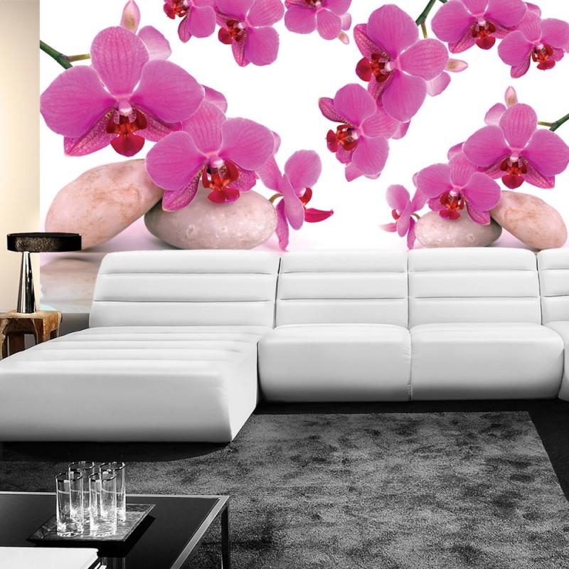Wallpaper orchidee steine  Fototapete