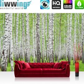 "Vlies Fototapete ""no. 433"" | Wald Tapete Birke Wald Bäume Natur grün weiß"
