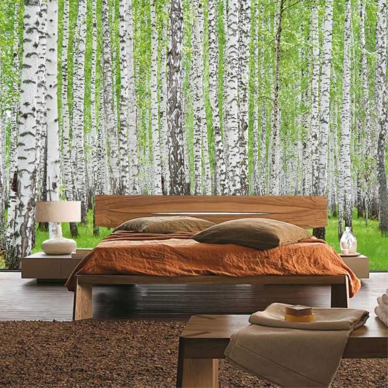 vlies fototapete no 433 wald tapete birke wald b ume. Black Bedroom Furniture Sets. Home Design Ideas