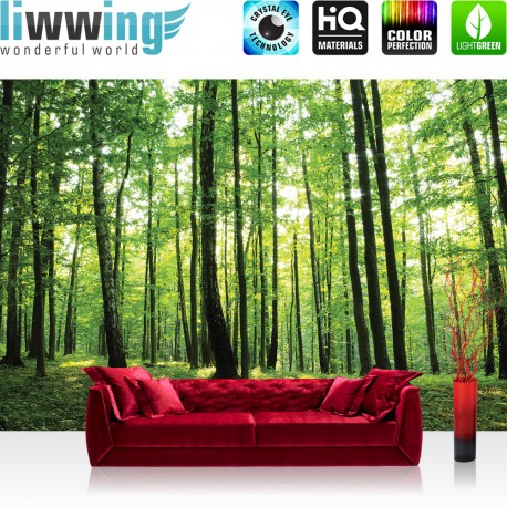 "Vlies Fototapete ""no. 528"" | Wald Tapete Bäume Wald Sonne Wiese grün"