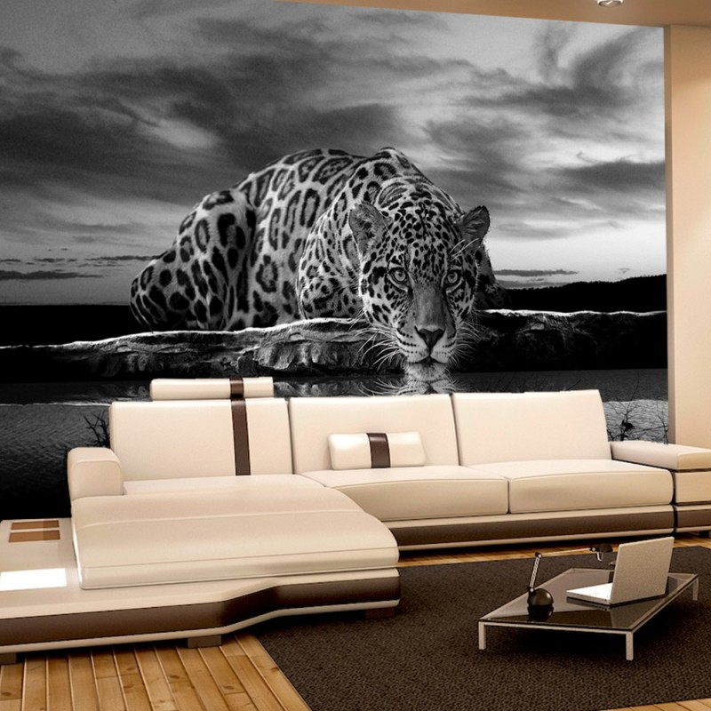 vlies fototapete no 614 tiere tapete jaguar. Black Bedroom Furniture Sets. Home Design Ideas