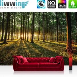 "Vlies Fototapete ""no. 638"" | Wald Tapete Sonnenuntergang Wald Bäume Wiese grün"