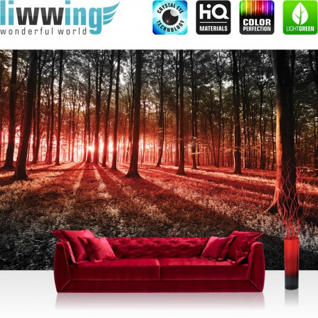 "Vlies Fototapete ""no. 640"" | Wald Tapete Sonnenuntergang Wald Bäume Wiese rot"