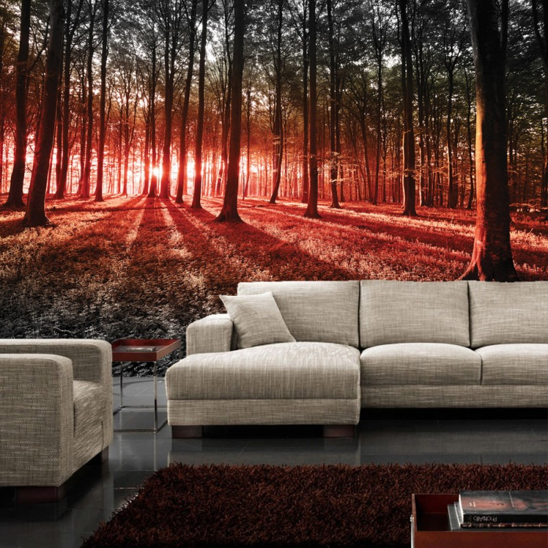 vlies fototapete no 640 wald tapete sonnenuntergang wald b ume wiese rot. Black Bedroom Furniture Sets. Home Design Ideas