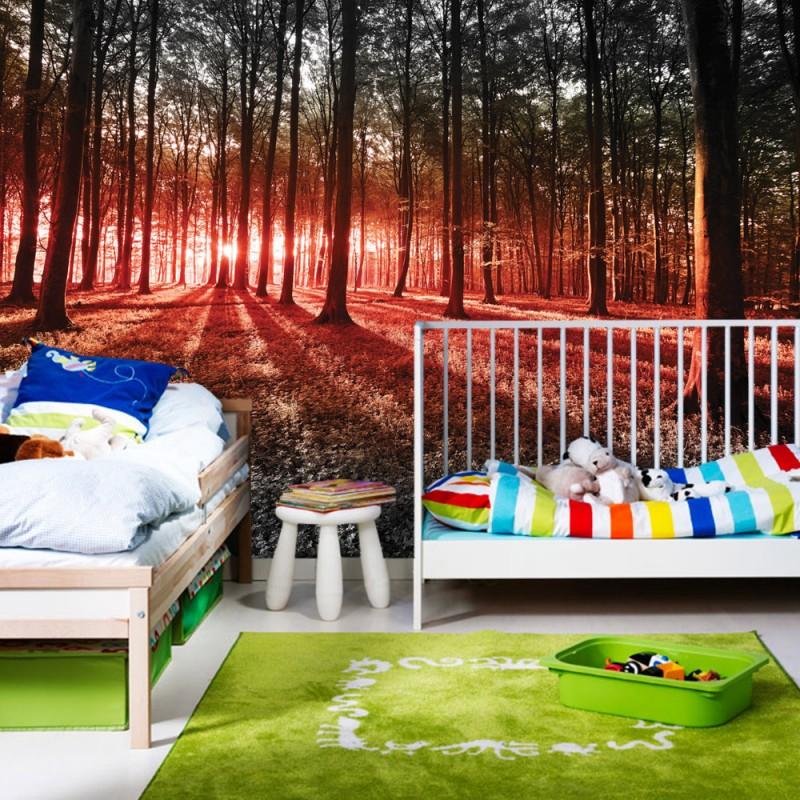 vlies fototapete no 640 wald tapete sonnenuntergang. Black Bedroom Furniture Sets. Home Design Ideas