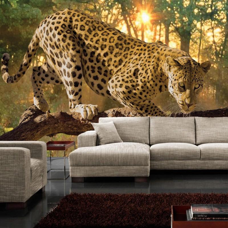 vlies fototapete no 728 tiere tapete gepard baum sonnenuntergang gelb. Black Bedroom Furniture Sets. Home Design Ideas