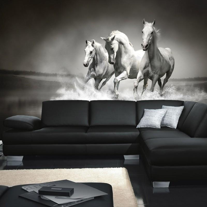 vlies fototapete no 1015 tiere tapete pferd wasser. Black Bedroom Furniture Sets. Home Design Ideas