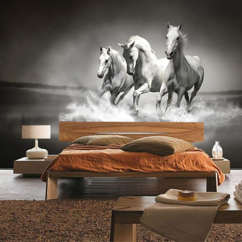 vlies fototapete no 1015 tiere tapete pferd wasser schimmel rennpferd schwarz wei. Black Bedroom Furniture Sets. Home Design Ideas