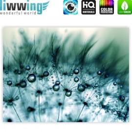 "liwwing (R) Marken Leinwandbild ""Turquoise Dandelion II"" | Classic (4:3) | Pusteblume Löwenzahn Blau"