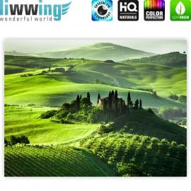 "liwwing (R) Marken Leinwandbild ""Sunrise in Tuscany"" | Classic (4:3) | Sonnenaufgang Italien Toskana Weinberg Weingut"