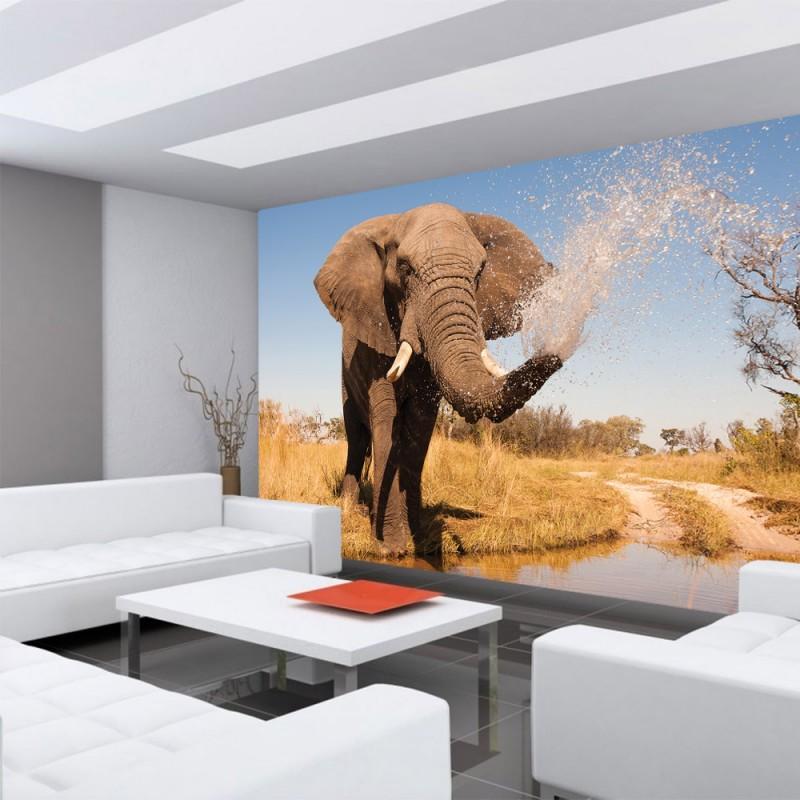 vlies fototapete no 1295 vliestapete liwwing r afrika. Black Bedroom Furniture Sets. Home Design Ideas