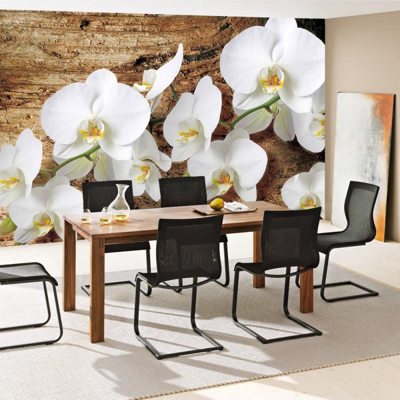 vlies fototapete no 1323 vliestapete liwwing r. Black Bedroom Furniture Sets. Home Design Ideas
