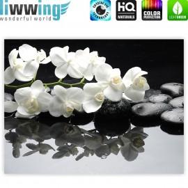 "liwwing (R) Marken Leinwandbild ""White Orchids an Black Stones"" | Classic (4:3) | Orchidee Blumen Blumenranke Rosa Natur"